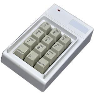 Pin Fone Serial